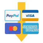 MPP Payment feature icon